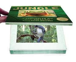 Jungle Photicular Book