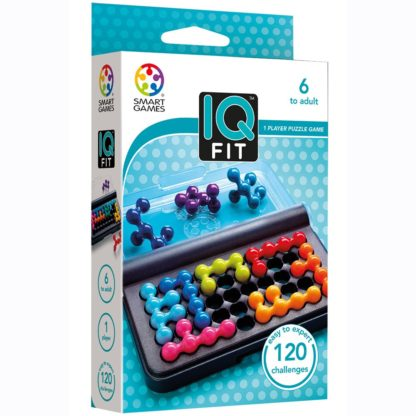 Whirligig Toys - IQ Fit 1