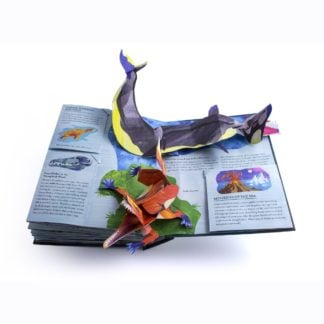 Whirligig Toys - Sharks Encyclopedia 2