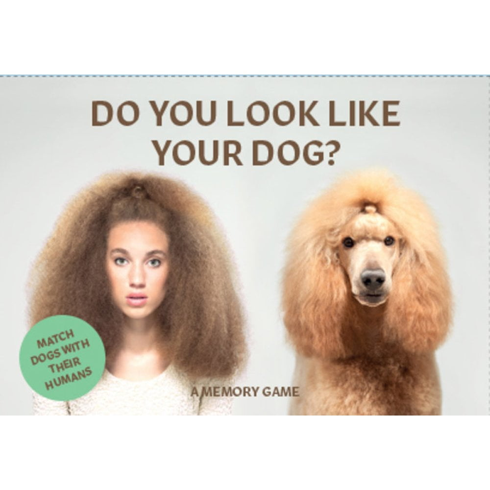 Whirligig Toys - Do You Look Like Your Dog 1