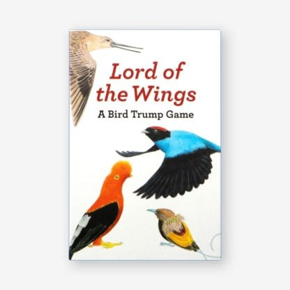 Whirligig Toys - Lord Of The Wings1