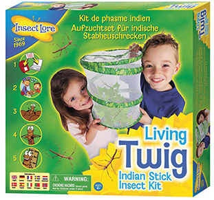 Whirligig Toys Stick Insects