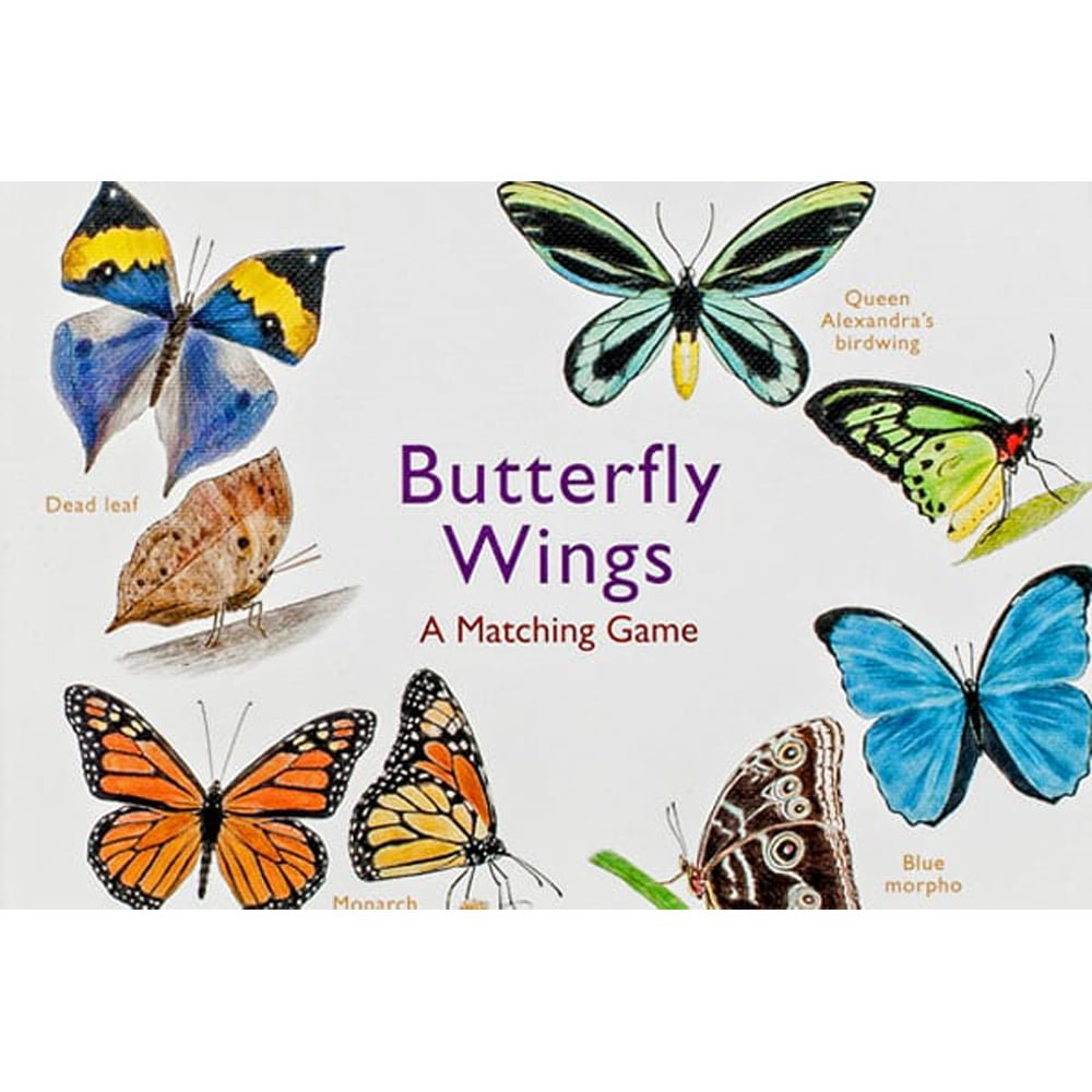 Whirligig Toys - Butterfly Wings1