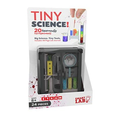 Whirligig Toys - Tiny Science1
