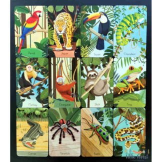 Whirligig Toys - Jungle Snap2