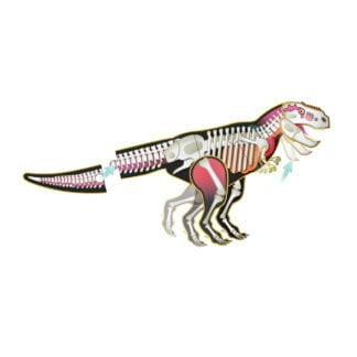 Whirligig Toys - Make and Move Trex2