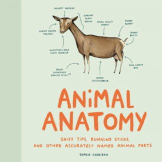 Whirligig Toys - Animal Anatomy1