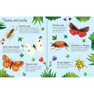 Whirligig Toys - Bugs To Spot2