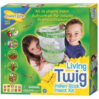 Whirligig Toys - Stick Insects1