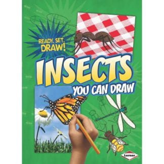 Whirligig Toys - Insects You Can Draw1