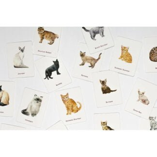 Whirligig Toys - Cats and Kittens Memory Game2