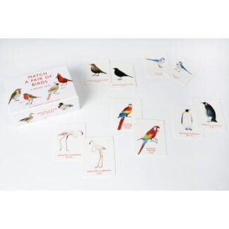 Whirligig Toys - Match A Pair Of Birds2