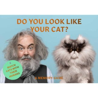 Whirligig Toys - Do You Look Like Your Cat1