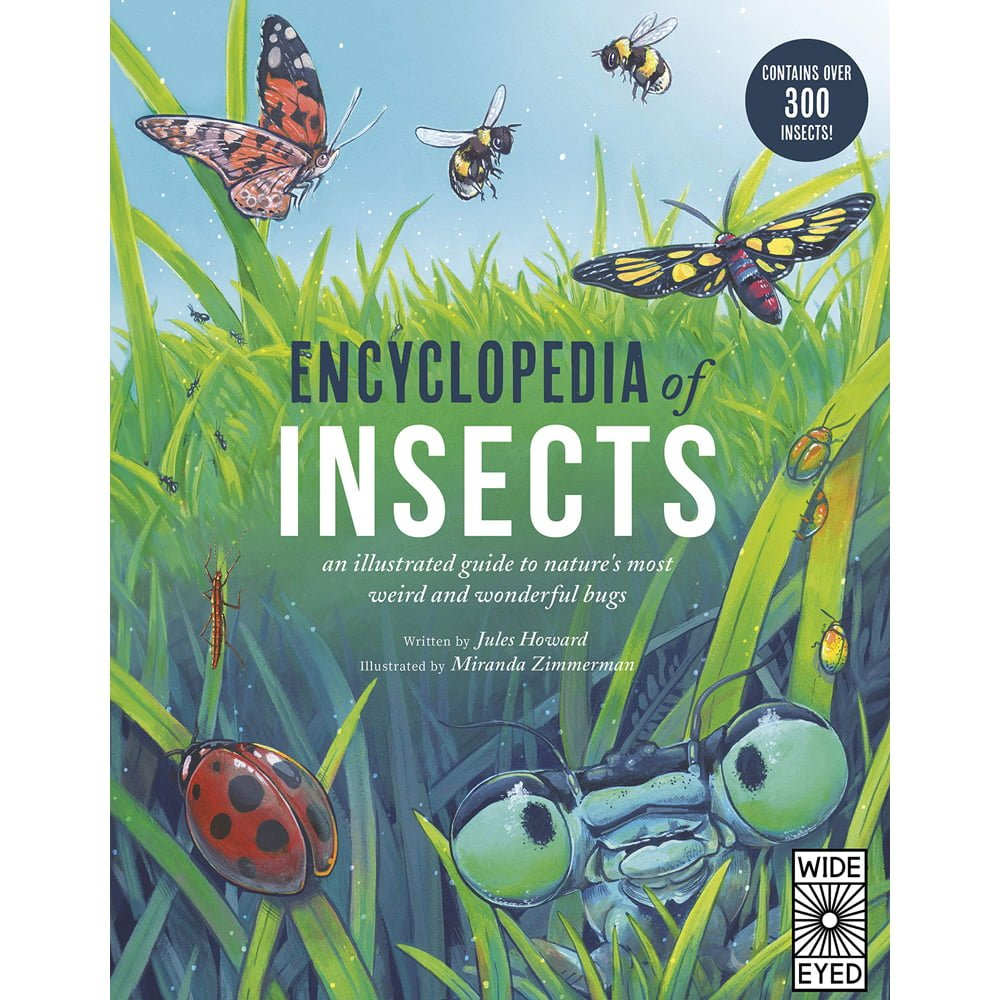Whirligig Toys - Encyclopedia Of Insects1