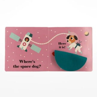 Whirligig Toys - Where's Mr Astronaut2