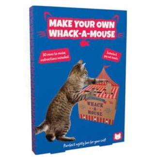 Whirligig Toys - Build A Whack A Mouse Game1