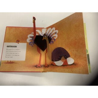 Whirligig Toys - Tortoise and Friends Pop Up Book2