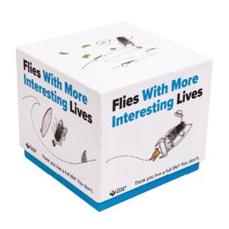 Whirligig Toys - Flies With More Interesting Lives1