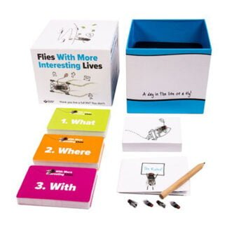 Whirligig Toys - Flies With More Interesting Lives2