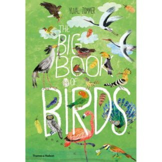 Whirligig Toys - Big Book Of Birds1