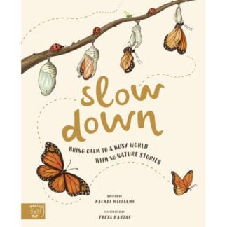 Whirligig Toys - Slow Down1