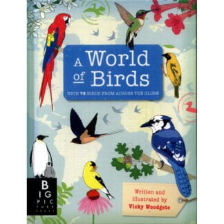 Whirligig Toys - A World Of Birds1