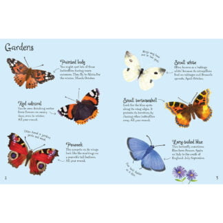 Whirligig Toys - Butterflies To Spot2