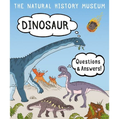 Whirligig Toys - Dinosaur Questions1