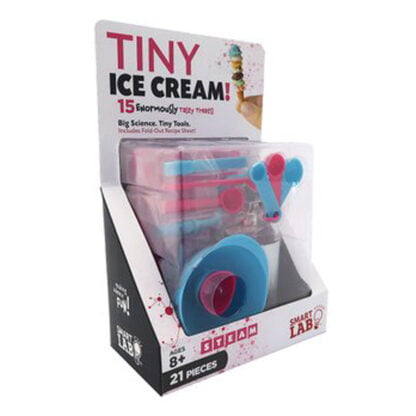 Whirligig Toys - Tiny Ice Cream1