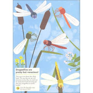 Whirligig Toys - Garden Insects and Bugs Stickerbook2