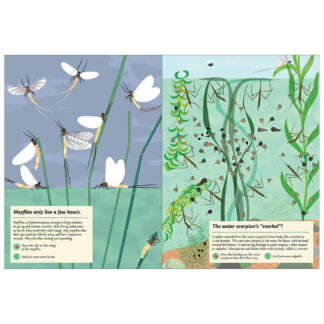 Whirligig Toys - Streams and Ponds Stickerbook2