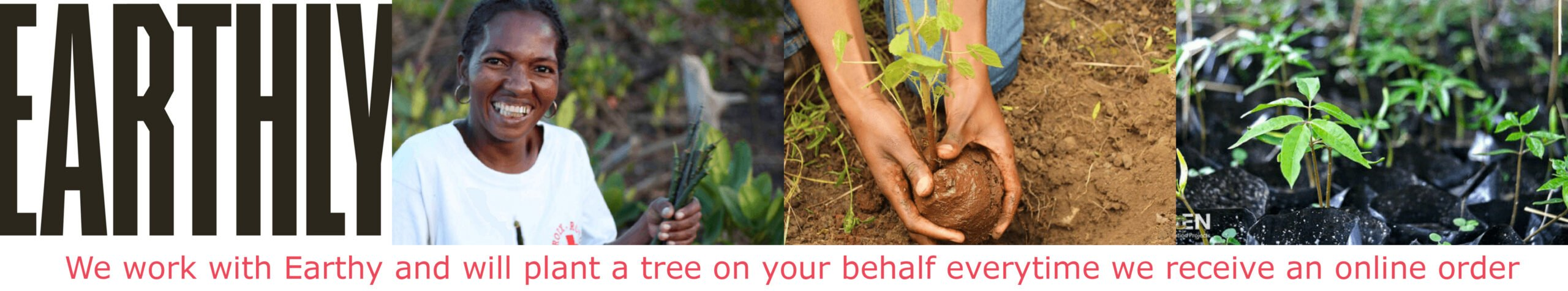 Whirligig Toys - Earthly Tree Planting Scheme