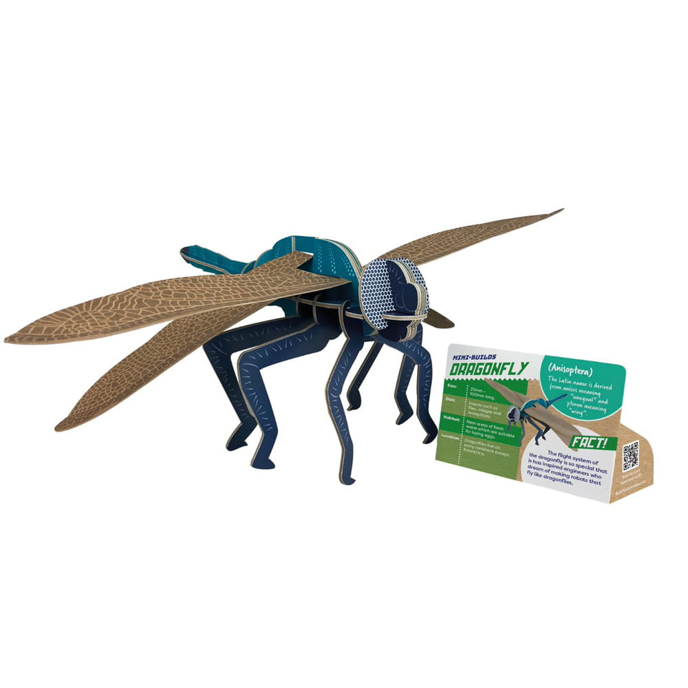 Whirligig Toys - Build Your Own Dragonfly2