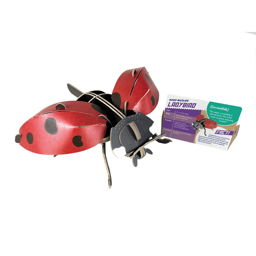 Whirligig Toys - Build Your Own Ladybird2
