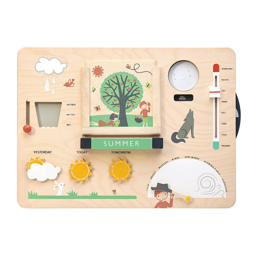 Whirligig Toys - Weather Watch1