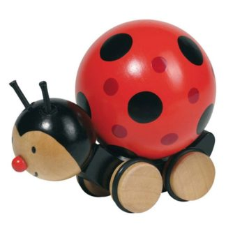 Wooden Pushalong Ladybird